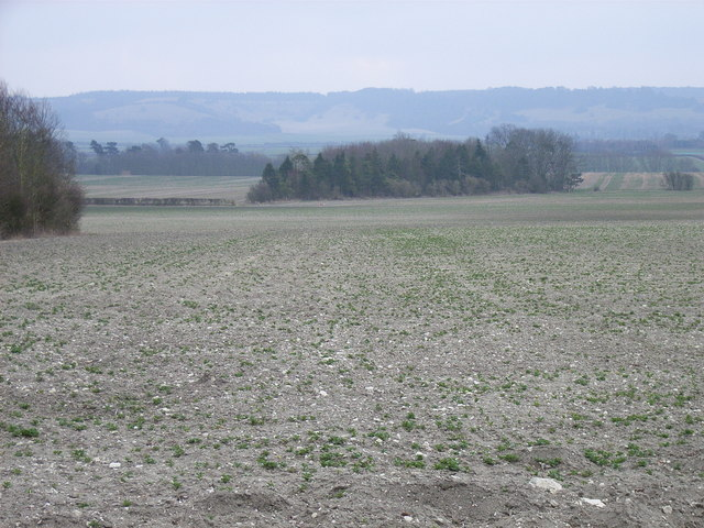 Triangular copse and farmland near Wheatfield