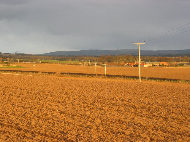 Newly ploughed fields.