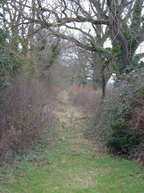 Green Lane in Clyst Vale