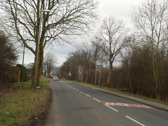 Scholes Lane, Scholes
