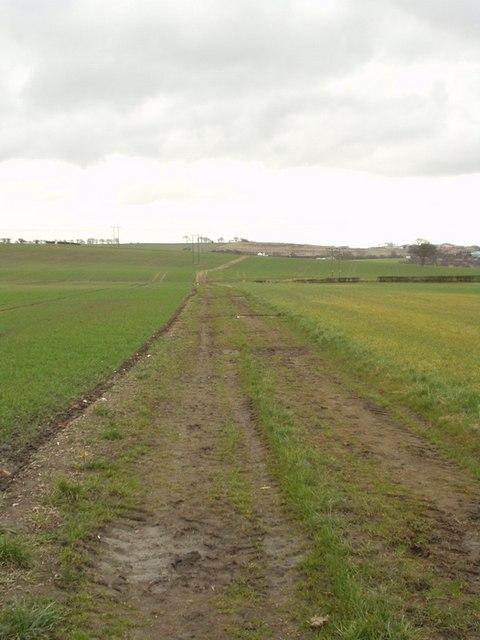 Path across the fields, Scholes