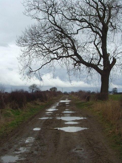 Ellerker Lane, Thorner