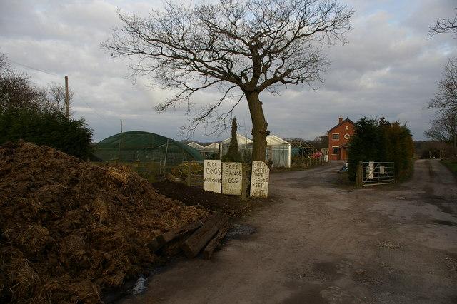 Oak House Nursery