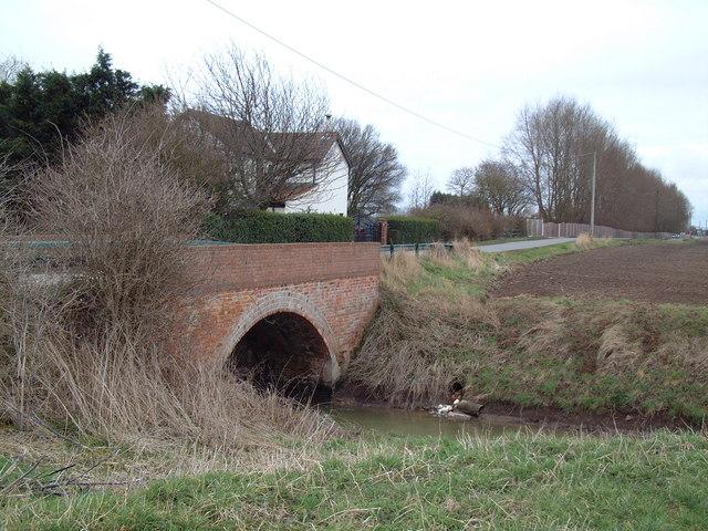 Jaque's Bridge