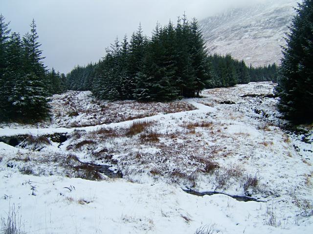 Allt Broighleachan forestry