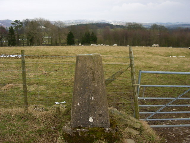 Crina Bottom Farm trig