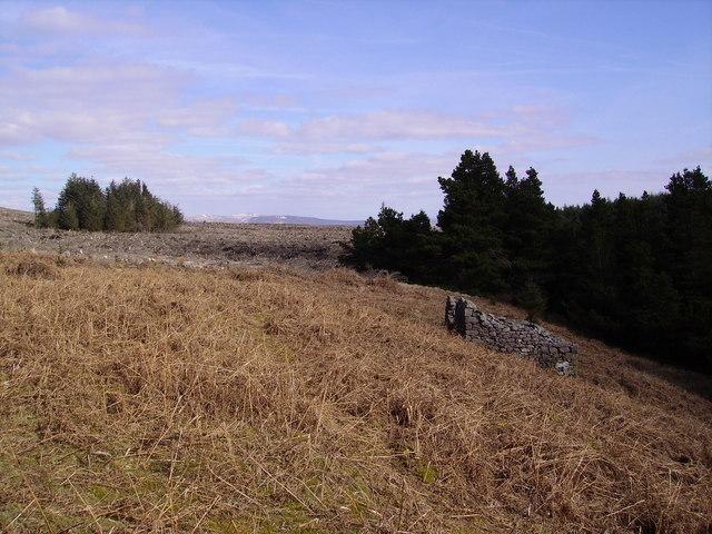 Ruin Lawkland Fell