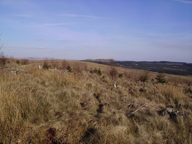 Crutchenber Fell