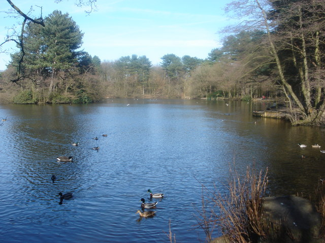 Lake at Cuerden Hall