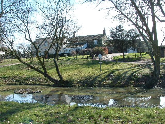 Bardsey village pond