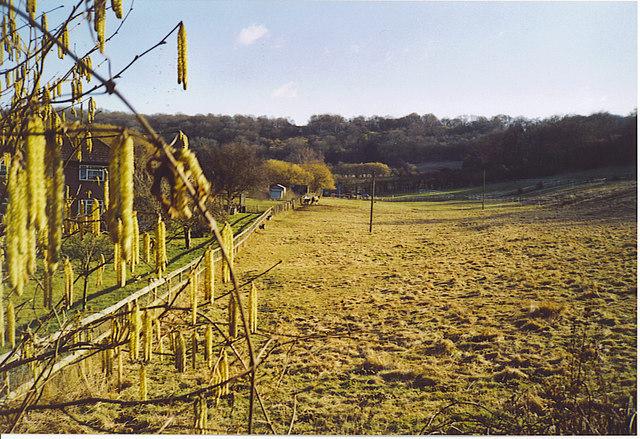 Sunray Farm, West Clandon.