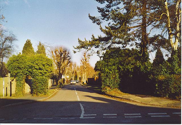 Lime Grove, West Clandon.