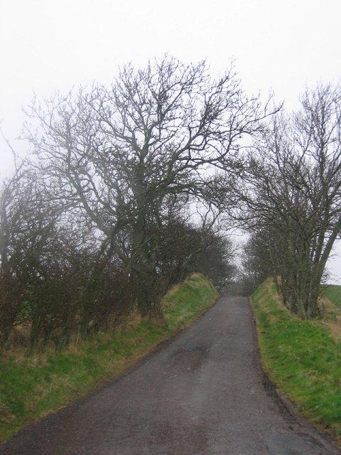 Road to Gleghornie