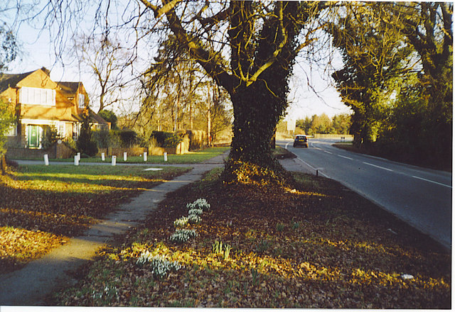 Clandon Road, Burnt Common.
