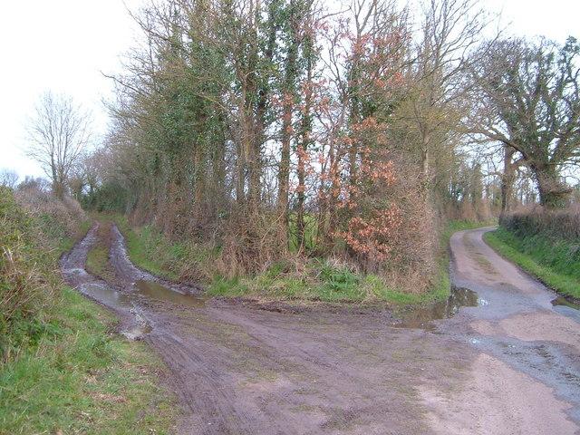 Lane junction near Westpoint
