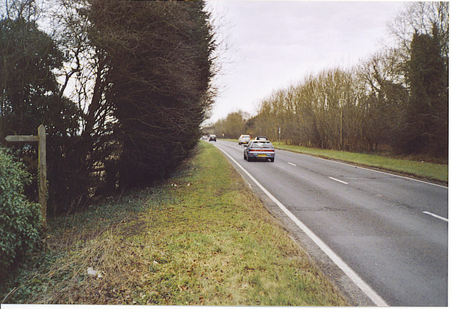 A31, The Hog's Back Road