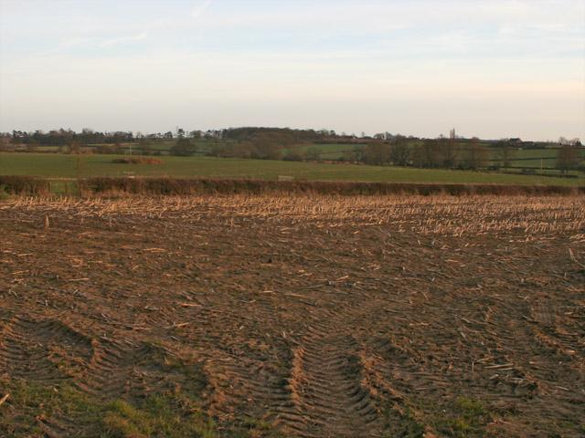 Farmland near Gaddesby, Leicestershire
