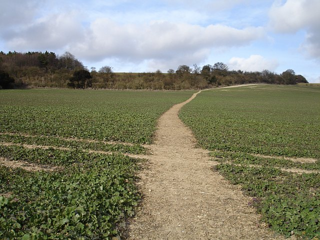 Footpath to Lower Deans Farm