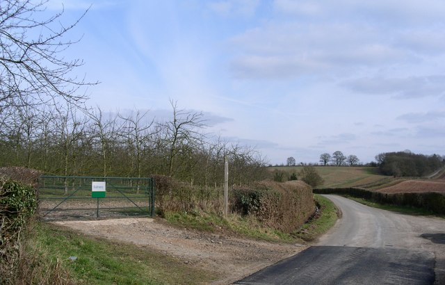 Bulmers orchards north of the lane to Ockeridge