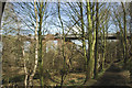 SE3703 : Railway viaduct over the Dove Valley Trail by Chris Yeates