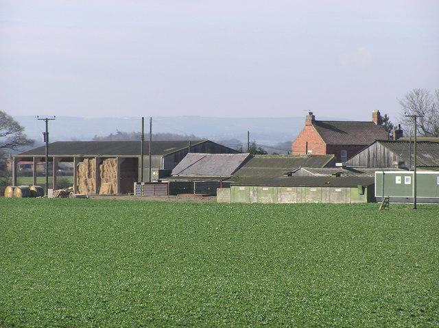 Hall Moor Farm.