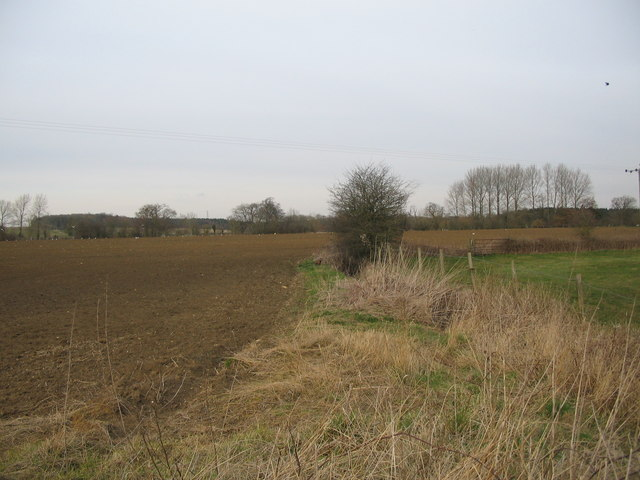 Farmland near Monkton Farleigh