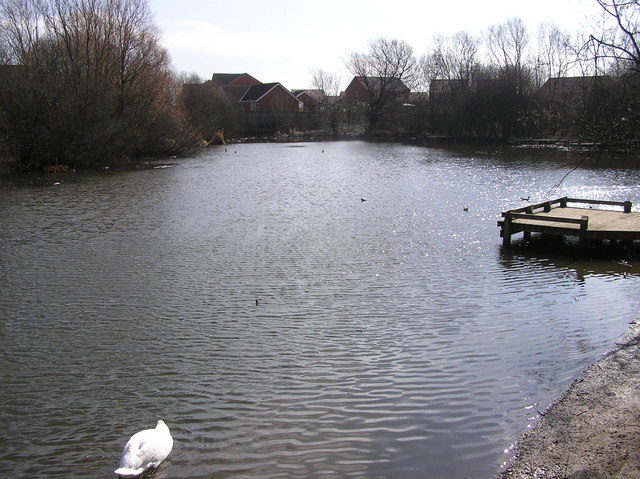 Brinkburn  Pond