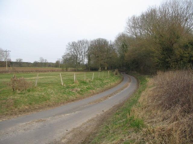 Country lane near Monkton Farleigh