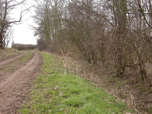 Byway past Strixton Plantation