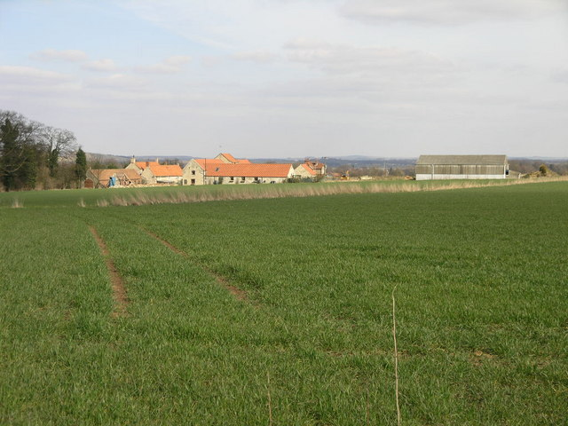 Fields and Farm