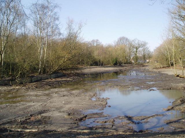 Rush Pond, Chislehurst, Kent