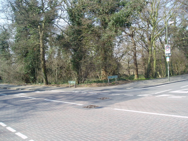 A woodland corner in SE9
