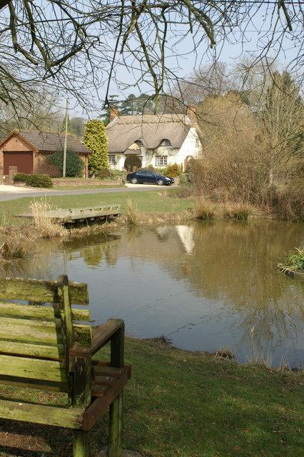 Duck Pond, Braishfield