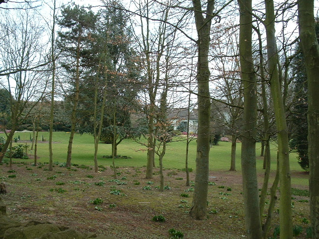 Gardens of Serridge House