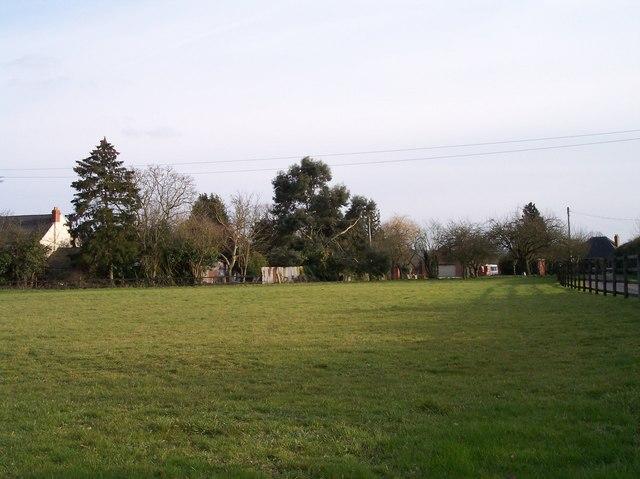 Blossonfields