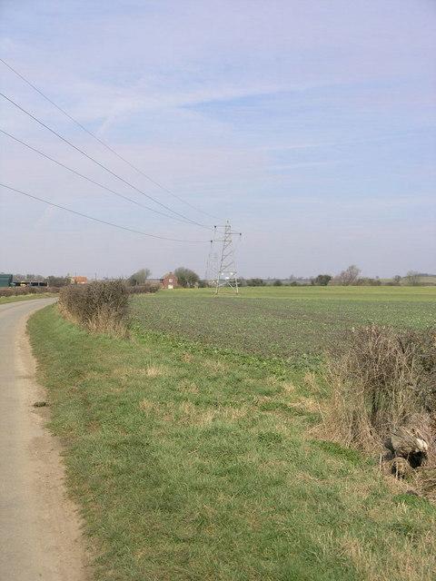 Pylons in Field