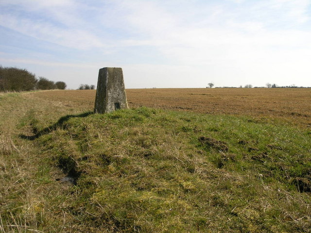 Field and Trig Point