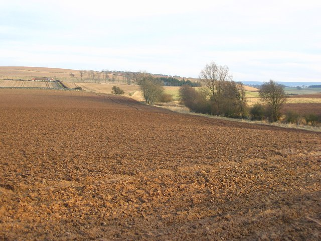 Ploughed land, Mainshill