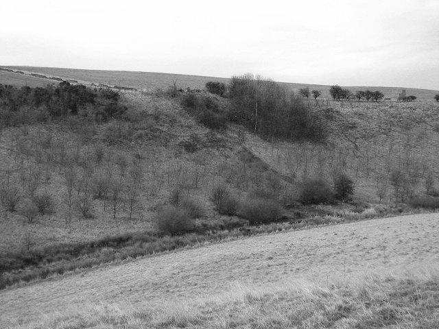 Whitelaw Hill.