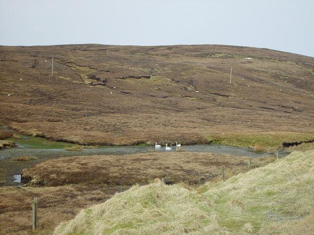 Near Voe, Shetland
