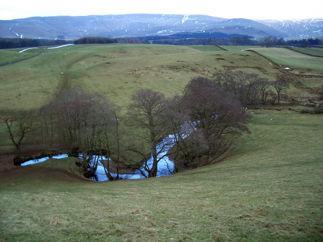 A fine meander in Sunnygill Beck