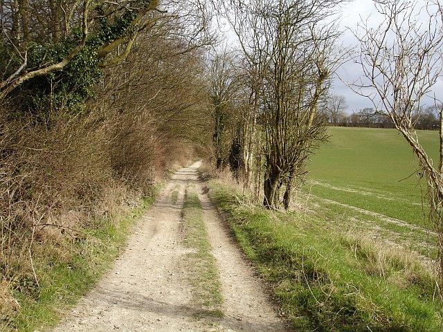 Pilgrims' Way