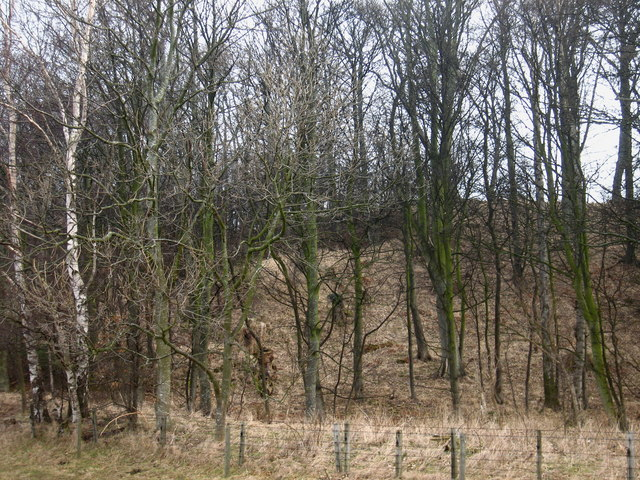 Ginglet Hill, near Stenton, East Lothian