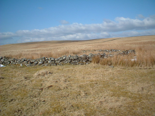 Disused Sheep Stell