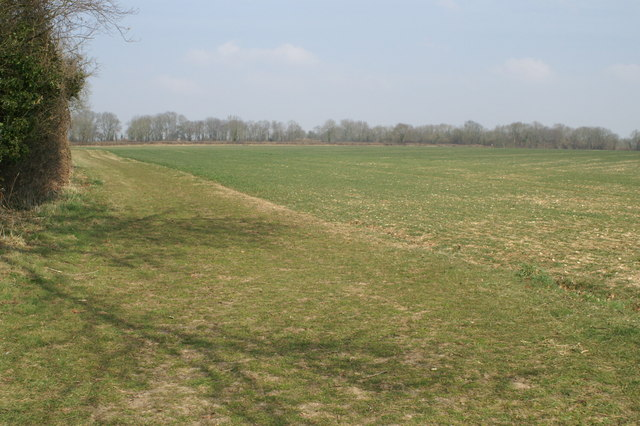 Fields near Hall Place
