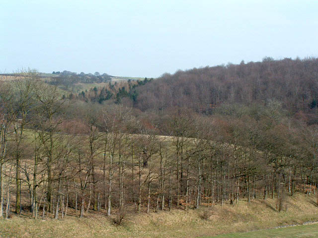 High Wood from Eccup reservoir dam