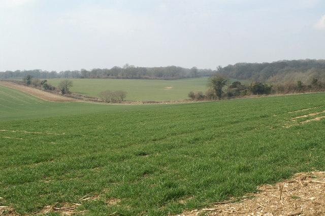 Farmland west of Eldon Road