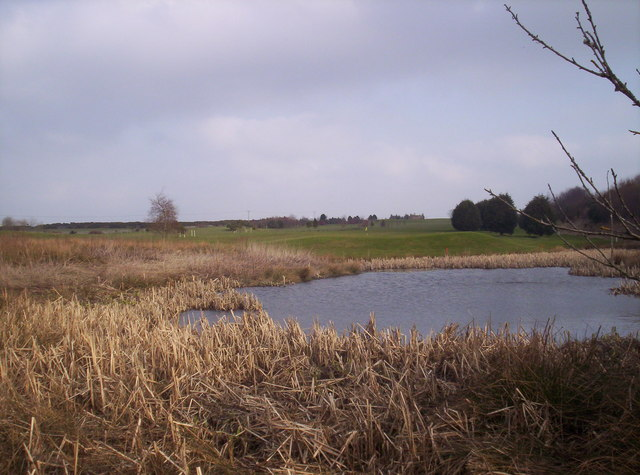 A Small Pond and 13th Green