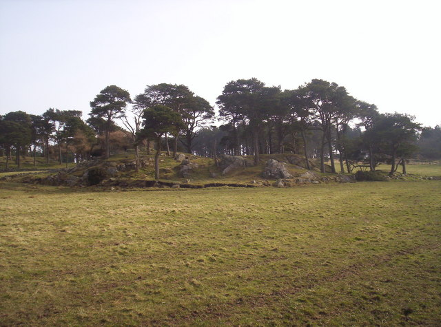 Rocky Copse with Scots Pines on Top.