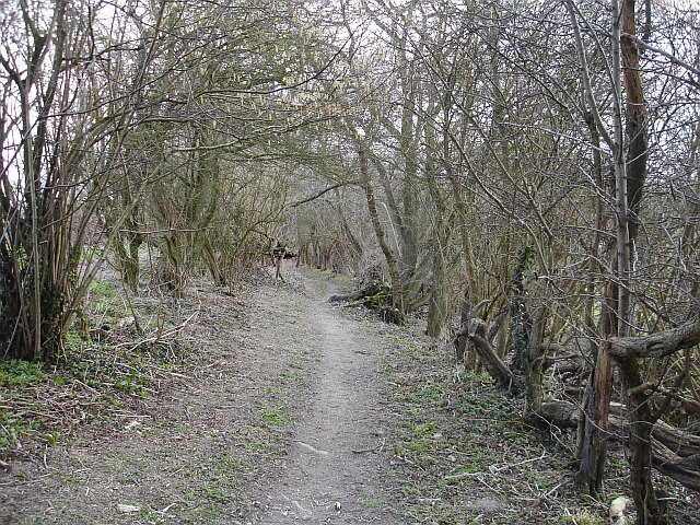 Footpath to Goddington